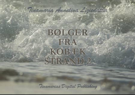 Bølger fra Kobæk Strand 2 af Tinamaria Annaliva Liziedatter