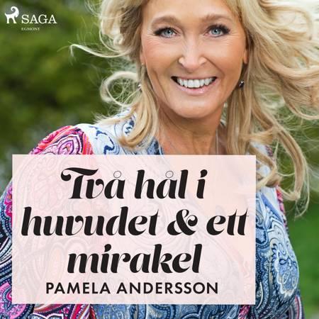 Två hål i huvudet och ett mirakel af Pamela Andersson
