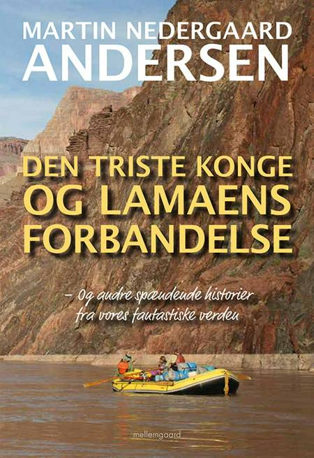 Den triste konge og lamaens forbandelse af Martin Nedergaard Andersen
