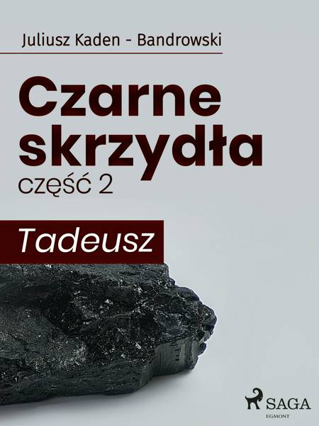 Czarne skrzydła 2 - Tadeusz af Juliusz Kaden Bandrowski