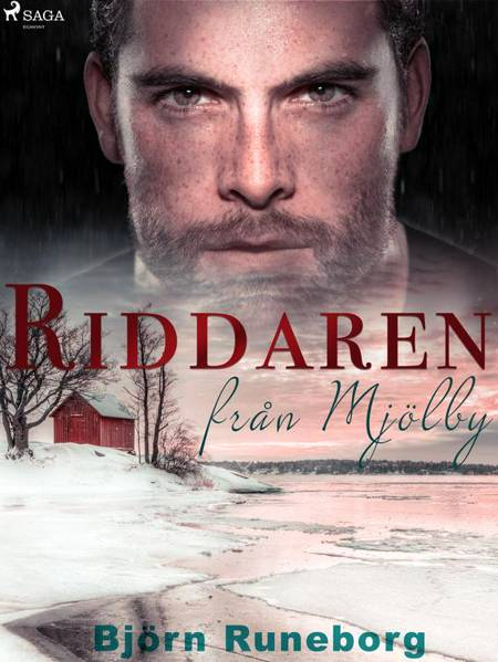 Riddaren från Mjölby af Björn Runeborg