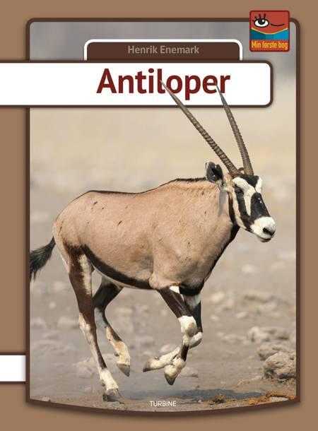 Antiloper af Henrik Enemark
