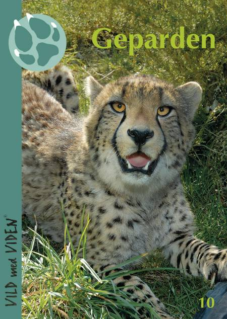 Geparden af Jesper Stagegaard