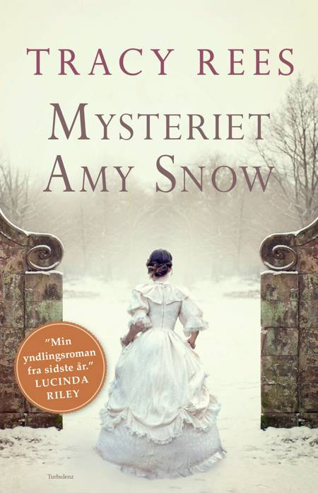 Mysteriet Amy Snow af Tracy Rees