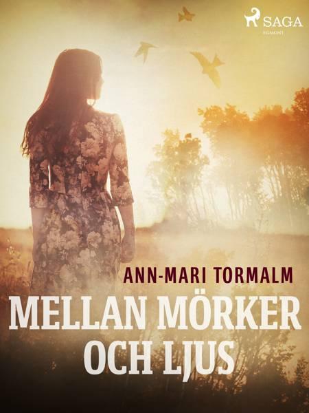 Mellan mörker och ljus af Ann-Mari Tormalm