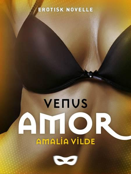 Amor af Amalia Vilde
