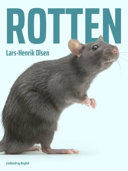 Rotten af Lars-Henrik Olsen