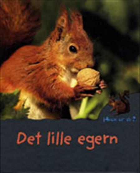 Det lille egern af Mireille Fronty