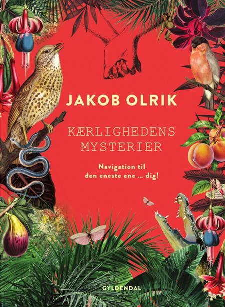 Kærlighedens mysterier af Jakob Olrik