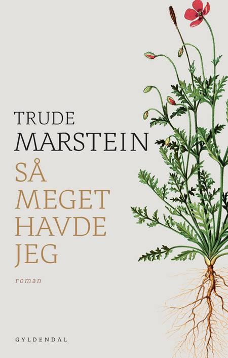 Så meget havde jeg af Trude Marstein