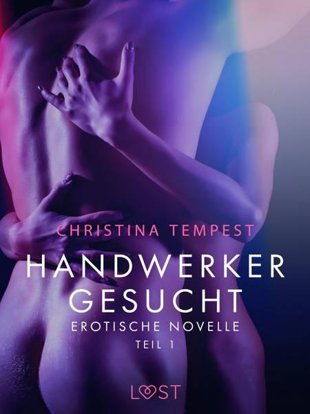 Handwerker gesucht - Teil 1: Erotische Novelle af Christina Tempest