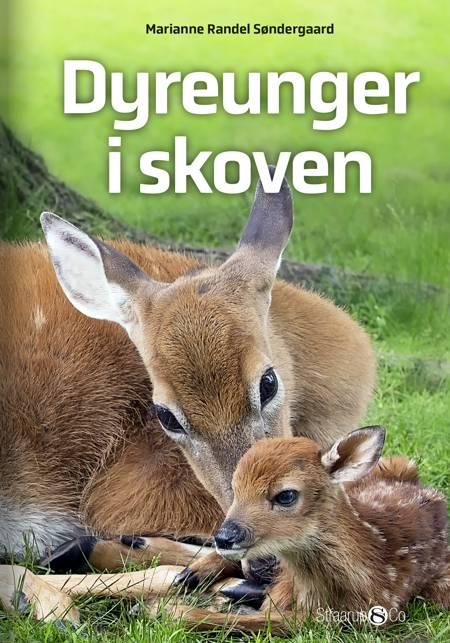 Dyreunger i skoven af Marianne Randel Søndergaard