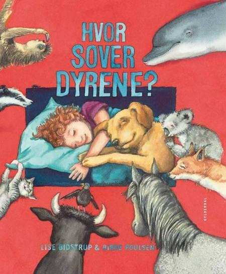 Hvor sover dyrene? af Lise Bidstrup