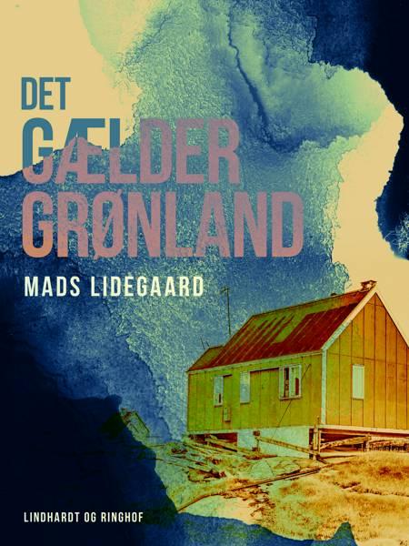 Det gælder Grønland af Mads Lidegaard