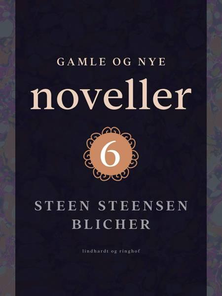 Gamle og nye noveller 6 af Steen Steensen Blicher