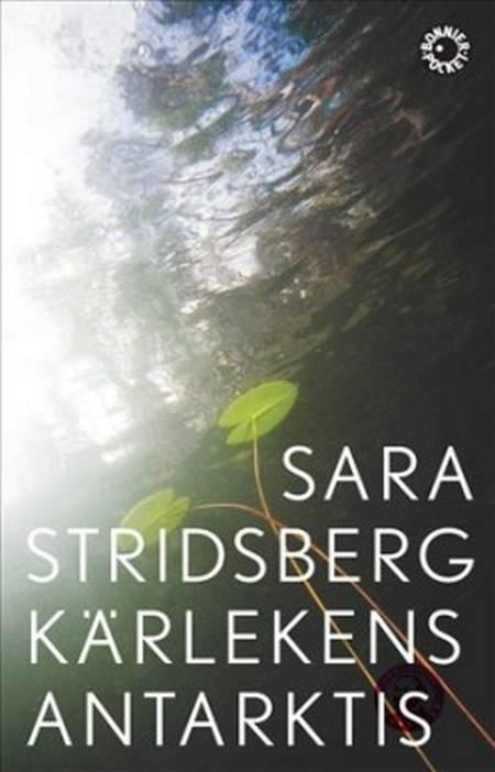 Kärlekens Antarktis af Sara Stridsberg