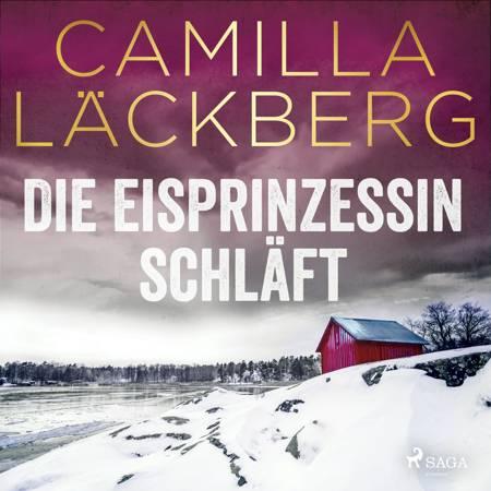 Die Eisprinzessin schläft af Camilla Läckberg