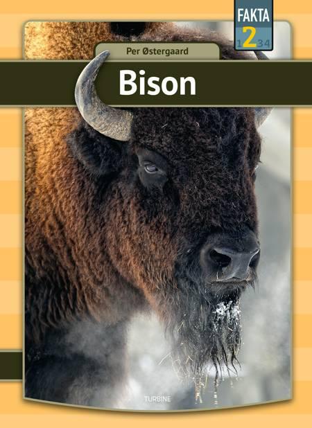 Bison af Per Østergaard