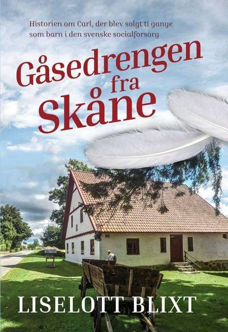 Gåsedrengen fra Skåne af Liselott Blixt