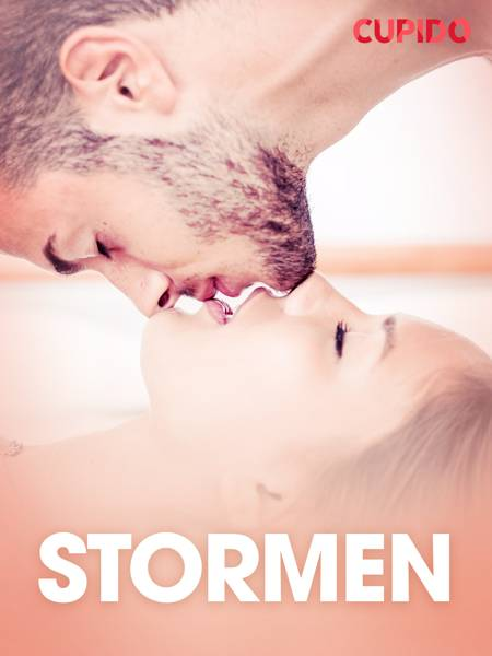 Stormen - erotiske noveller af Cupido