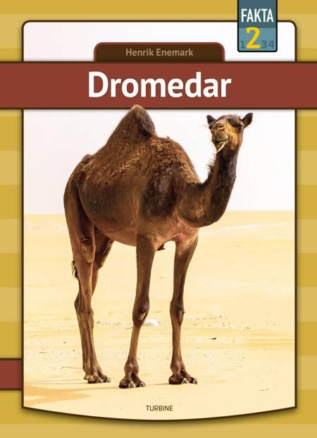 Dromedar af Henrik Enemark