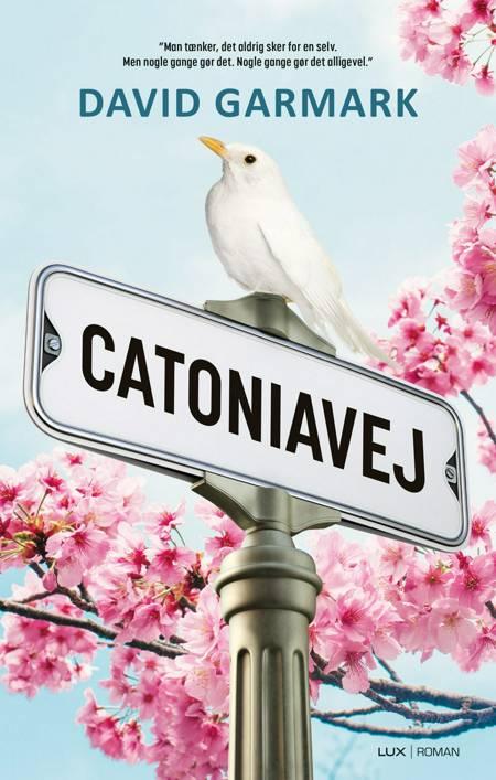 Catoniavej af David Garmark