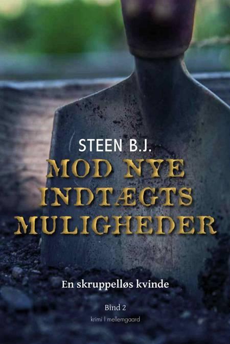 Mod nye indtægtsmuligheder af Steen B.J.