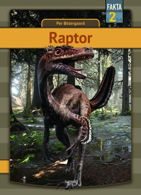 Raptor af Per Østergaard