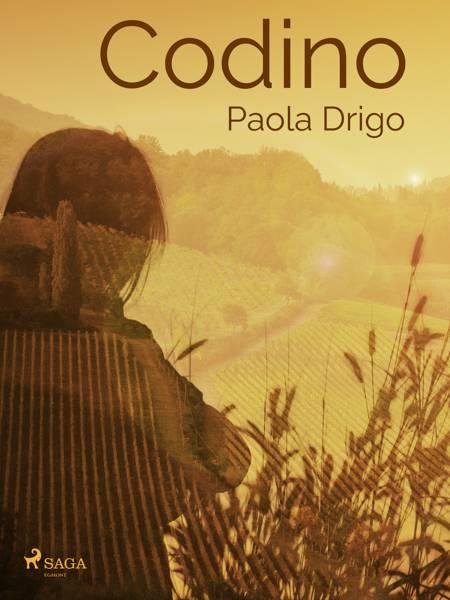 Codino af Paola Drigo