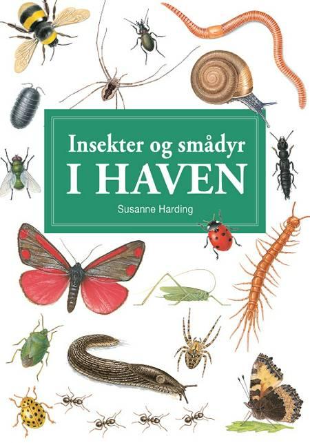 Insekter og smådyr i haven - display med 10 stk af Susanne Harding