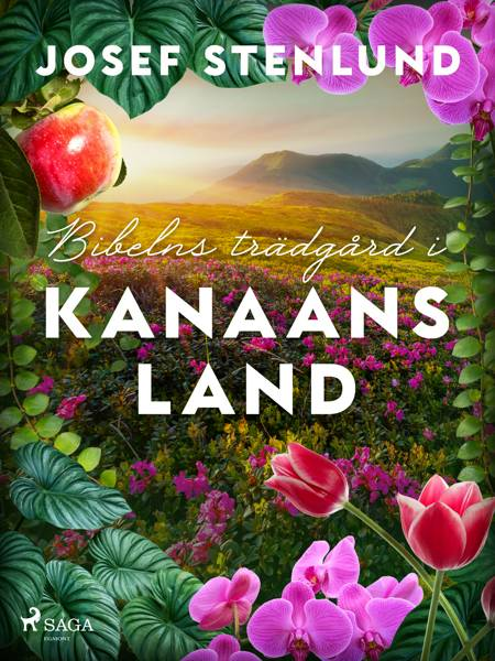 Bibelns trädgård i Kanaans land af Josef Stenlund