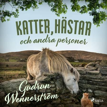 Katter, hästar och andra personer af Gudrun Wennerström