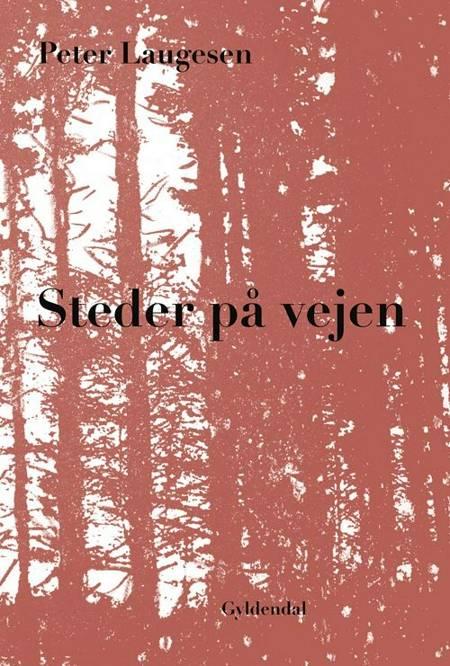 Steder på vejen af Peter Laugesen