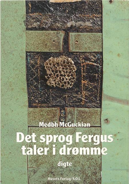 Det sprog Fergus taler i drømme af Medbh McGuckian