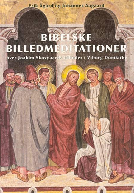 Bibelske billedmeditationer over Joakim Skovgaards billeder i Viborg Domkirke af Erik Ågård og Johannes Aagaard