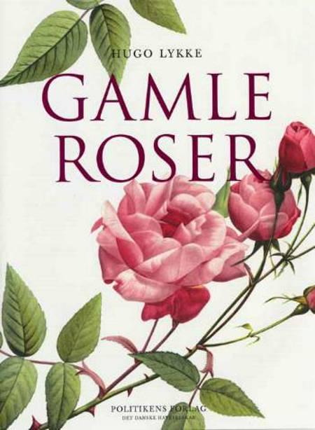 Gamle roser af Hugo Lykke