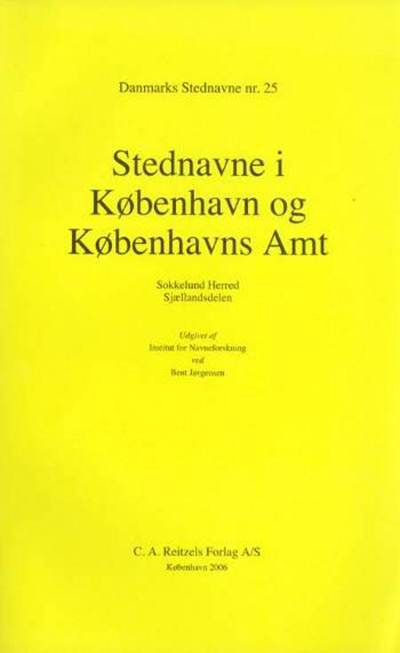 Danmarks stednavne af Bent Jørgensen
