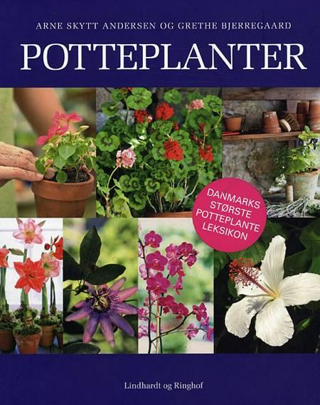 Potteplanter af Grethe Bjerregaard og Arne Skytt Andersen