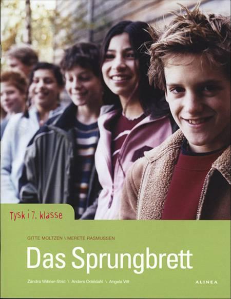 Das Sprungbrett af Gitte Moltzen og Merete Rasmussen