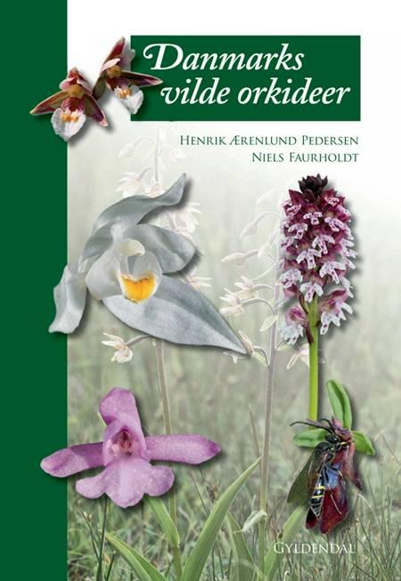 Danmarks vilde orkidéer af Niels Faurholdt og Henrik Ærenlund Pedersen