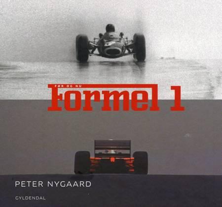 Formel 1 - guide 2007 af Peter Nygaard