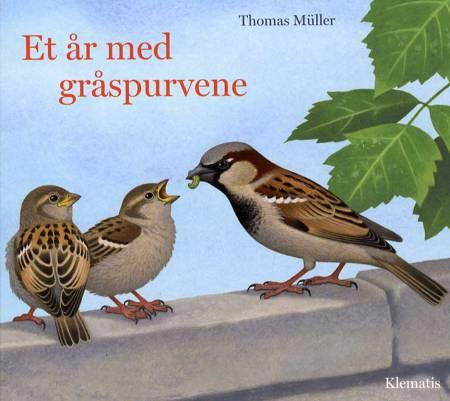 Et år med gråspurvene af Thomas Müller