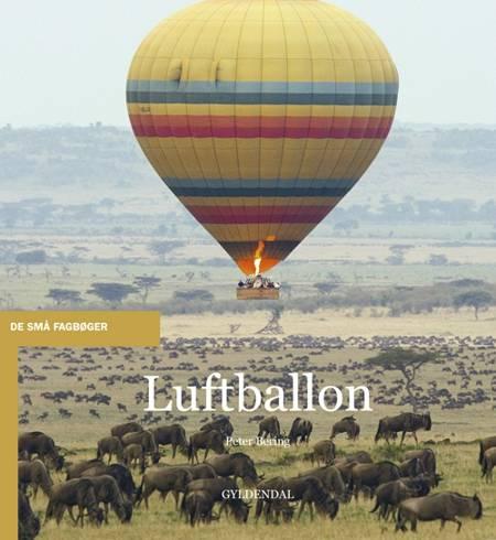 Luftballon af Peter Bering