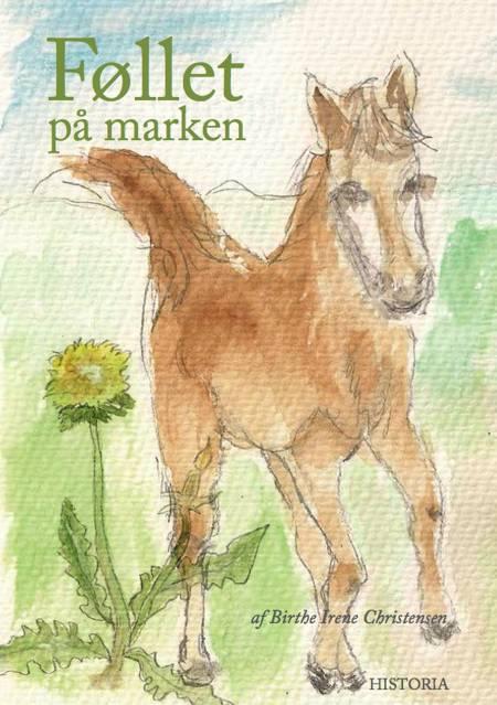 Føllet på marken af Birthe Irene Christensen