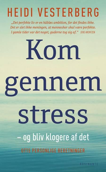 Kom gennem stress - og bliv klogere af det af Heidi Vesterberg