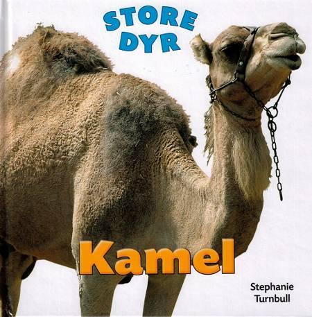 Kamel af Stephanie Turnbull
