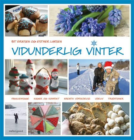 Vidunderlig vinter af Esther Larsen og Bit Eriksen