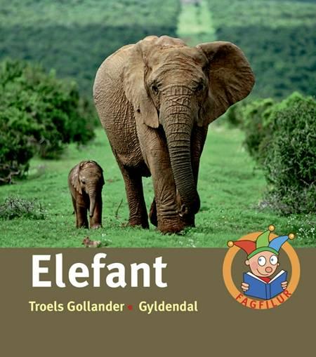 Elefant af Troels Gollander