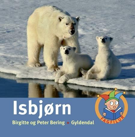 Isbjørn af Birgitte Bering og Peter Bering