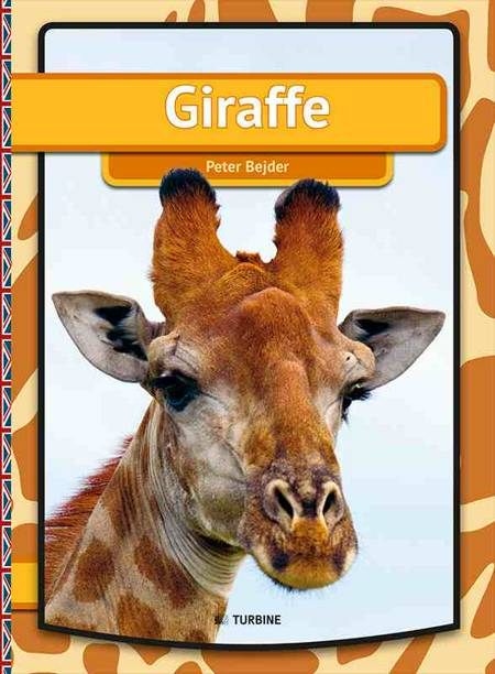 Giraffe af Peter Bejder